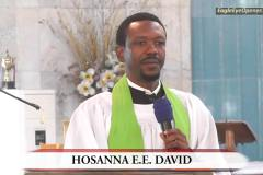 Hosanna David
